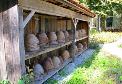 Impressie van Op bezoek bij de imker bij Het Bijenhuis
